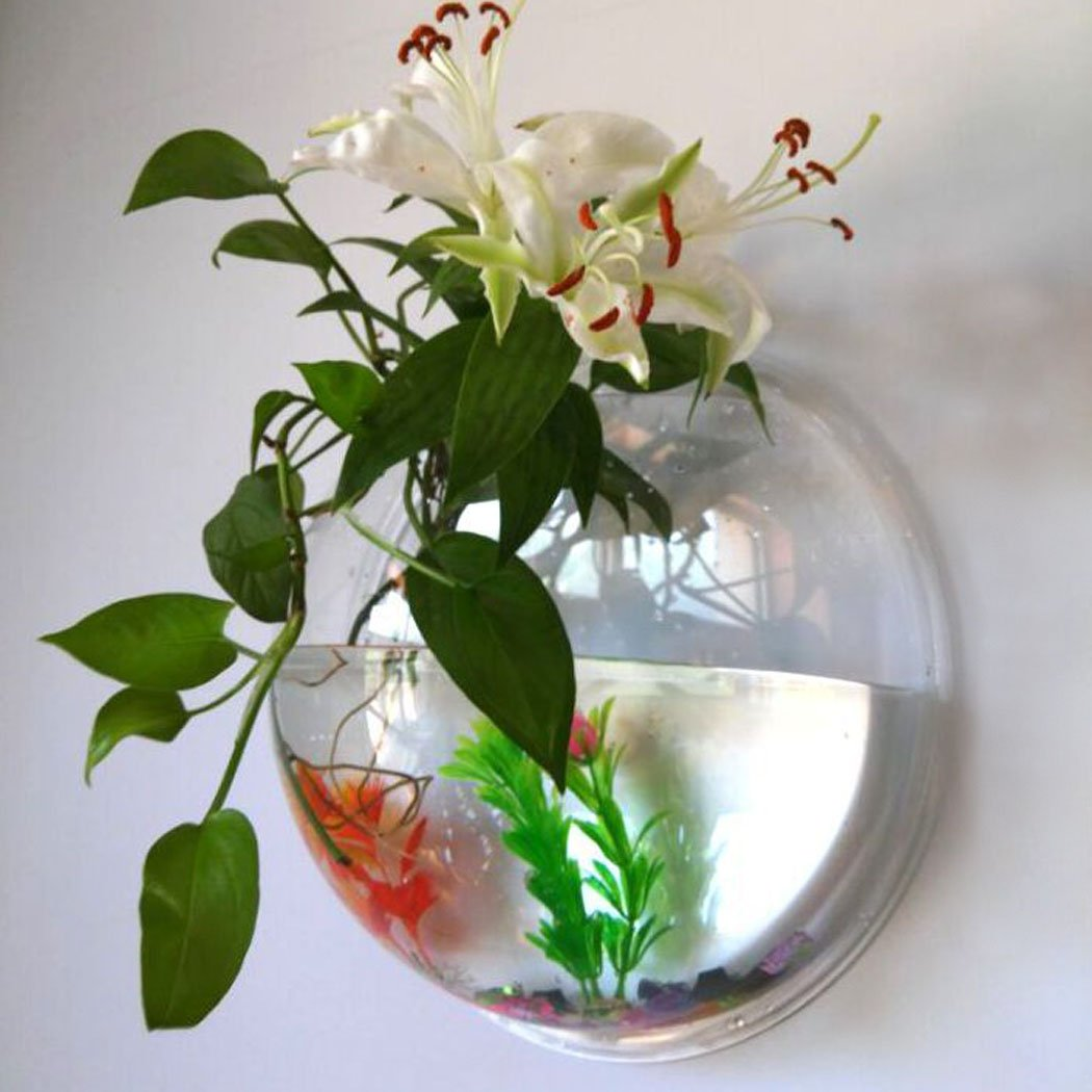 Amazon outgeek wall fish tank hanging clear acrylic fish amazon outgeek wall fish tank hanging clear acrylic fish bubble flower plant pot aquarium 9in pet supplies reviewsmspy