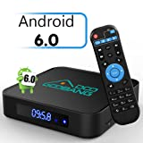 [2G+16G] 2018 Newest Model GooBang Doo X2 Android 6.0 TV Box Amlogic S905X 64 Bits Quad Core, Supporting 4K (60Hz) Full HD /H.265 /WiFi 2.4GHz/Bluetooth 4.0
