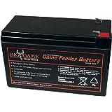 Big Game 12V Game Feeder Battery