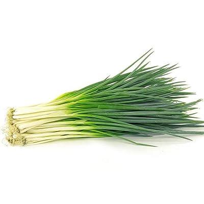 Green Onion Seeds for Yard Gardening Plant, 100Pcs Shallot Green Onion Vegetable Seasoning Seeds Garden Farm Bonsai Plant by Mosichi : Garden & Outdoor
