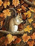 Caroline's Treasures BDBA0388GF Autumn Grey Squirrel by Daphne Baxter Garden Flag, Small, Multicolor Review
