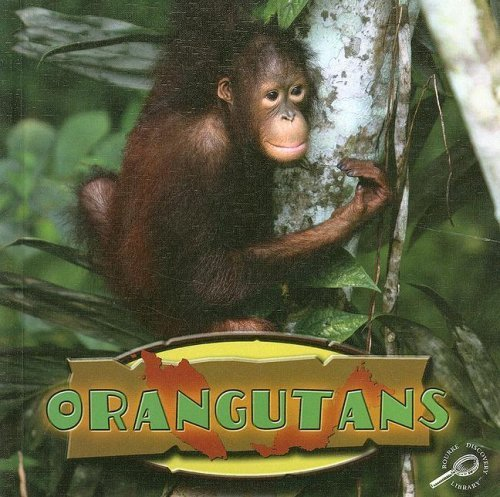 Download Orangutans (Amazing Apes (Discovery Library)) by David Armentrout (2008-01-01) pdf