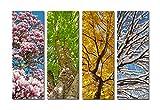 Yang Hong Yu 4 Season Landscape Canvas Prints - Best Reviews Guide