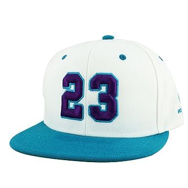 Number  23 White Purple Aqua Visor Snapback Hat Cap X Air Jordan Grape  Hornets 1f6b33e47b67