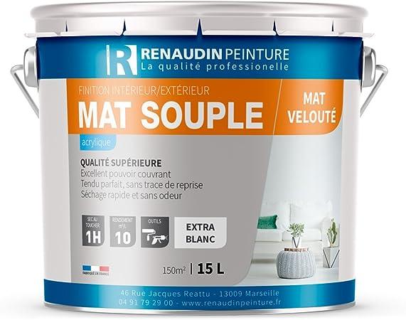 Renaudin Peinture 130107 Souple Peinture Acrylique Finition Mat Mur Plafond Interieur Blanc 15l Blanc Amazon Fr Bricolage