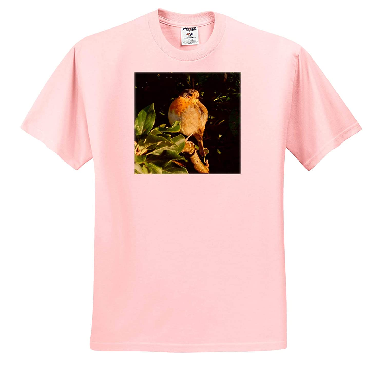 T-Shirts 3dRose Russ Billington Photography Image of English Robin in Late Summer