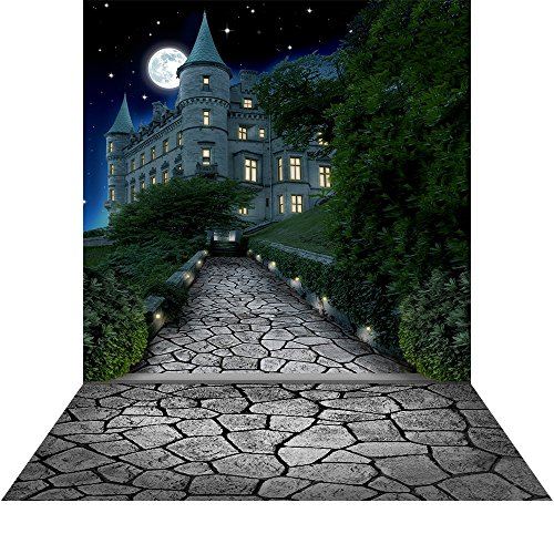 Photography Backdrop with Floor - Castle Pathway Grey - 10x20 Ft. Seamless Fabric ()