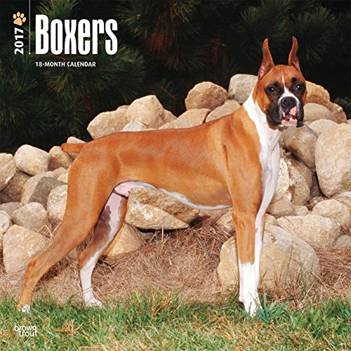 Free Boxers - 2017 Calendar 12 x 12in