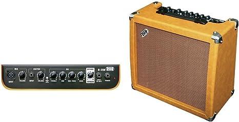 Zar F962230 - Amplificador guitarra acústica A-20R A-20R: Amazon ...