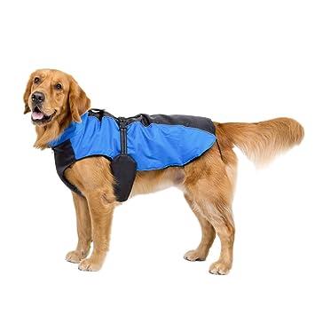 Decdeal - Chaqueta para Perros Grandes para Esquí Ropa de Invierno Resistente al Agua y Viento: Amazon.es: Deportes y aire libre