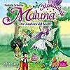 Der Zauberwald feiert (Maluna Mondschein 6)