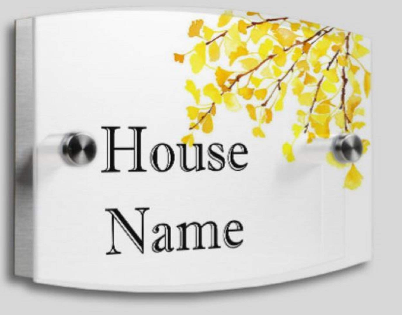 NAINA Custom House Number Plaque-Matte Acrylic and Brushed Aluminum- Double Plates Modern Style Size: 8' x 5.5' - Personalized Home | Office Signs (Layout 1)
