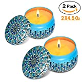 Eyansda Scented Candles Set of Lavender, Eco-Friendly Pure Soy Wax for Stress Relief and Aromatherapy, Protable Travel Candle-2 Pack