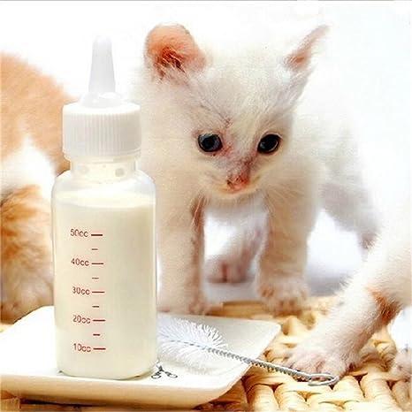 uhat® Perro y gato biberón 50 ml recién nacido botella Pot 6 piezas Match cepillo