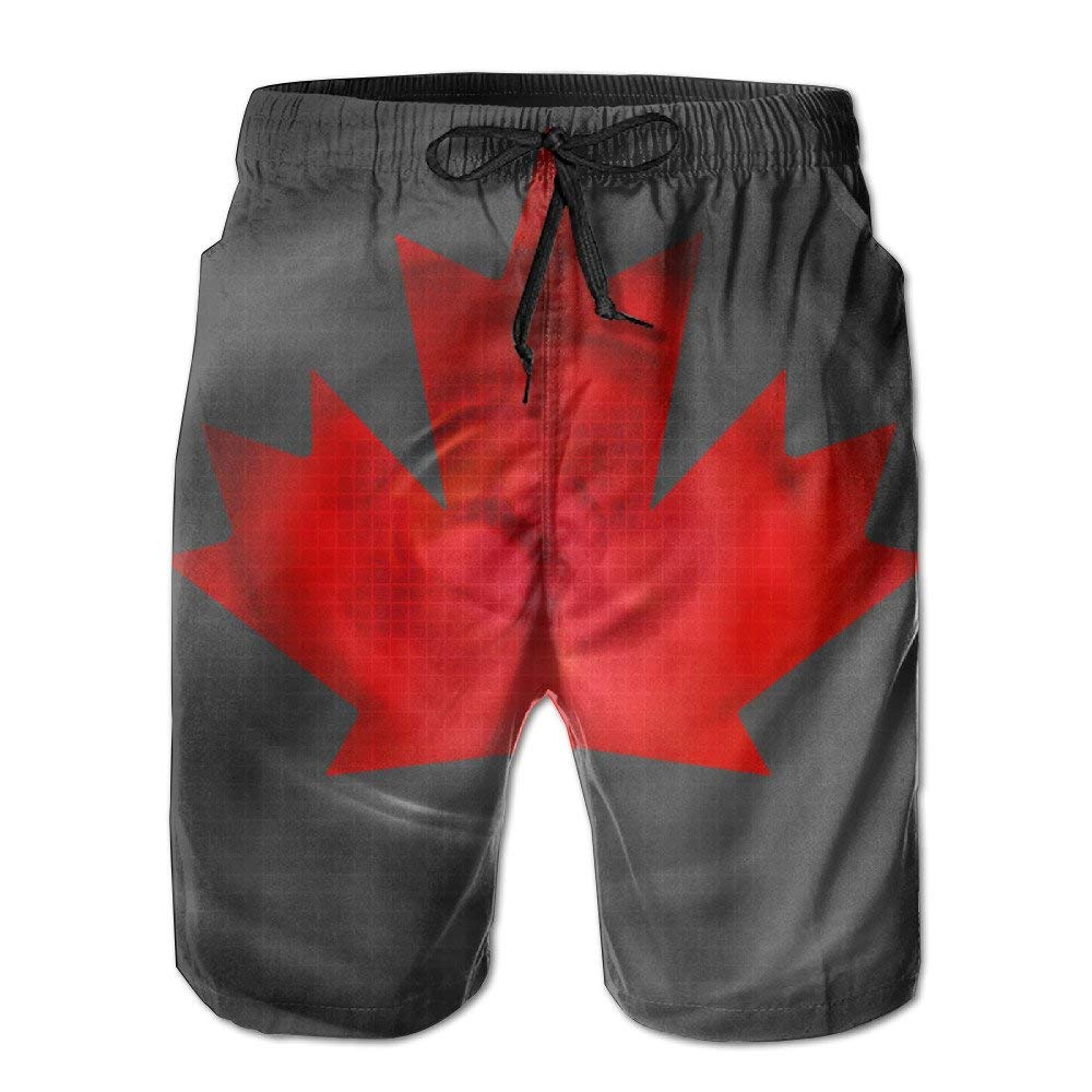 Mens Boardshort Beach Shorts Swim Trunks Casual Shorts.