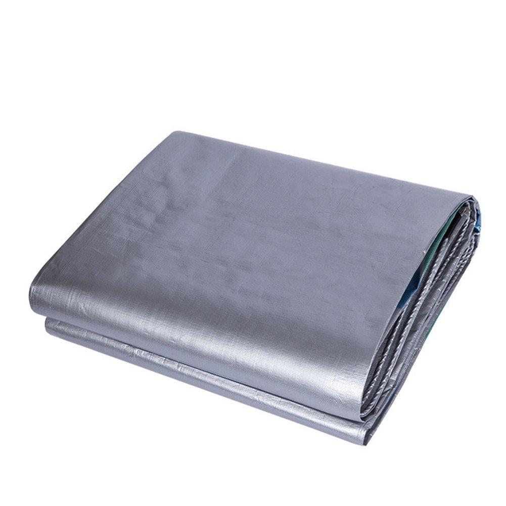 CHAOXIANG オーニング 厚い 両面 防水 耐寒性 日焼け止め 耐食性 耐引裂性 耐摩耗性 防塵の ライトウィッグ PE 銀、 190g/m 2、 厚さ 0.43mm、 21サイズ (色 : シルバー しるば゜, サイズ さいず : 10×12m) B07DBPSNS2  シルバー しるば゜ 10×12m