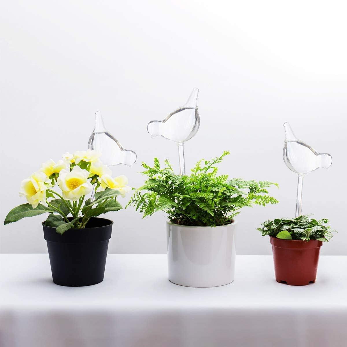 KnikGlass - Juego de 3 Bolas de Agua para Plantas, Forma de pájaro, soplado a Mano, Transparente, Mini Bombillas de Cristal Transparente