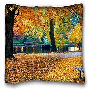 Soft Pillow Case Cover ( Landscapes nature Mountains Valley of the rocks lodge ) Soft Pillow Case Cover 16*16 Inch (One Sides)Zippered Pillowcase suitable for California King-bed PC-Orange-5656