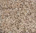 Collossal II Frieze Shag Area Rug - Oyster Bay - plush textured carpet
