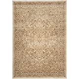 Safavieh Paradise Collection PAR169-3444 Stone and Cream Viscose Area Rug (2'7″ x 4′) For Sale