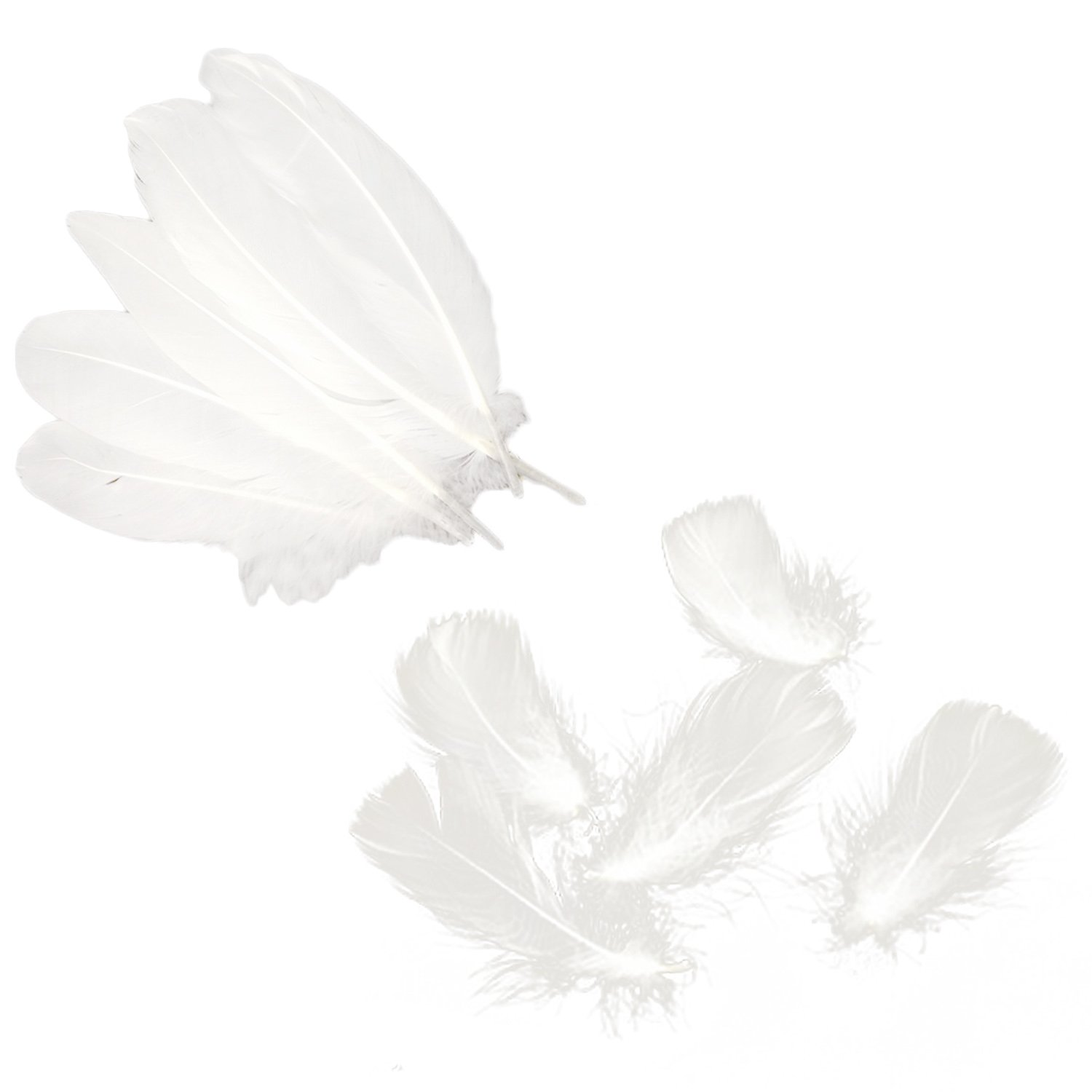 200pcs Natural White Feathers for Home Wedding Festival Party Decor DIY Craft Handmade Project Accessories Clothes Bag Decorations Migavan