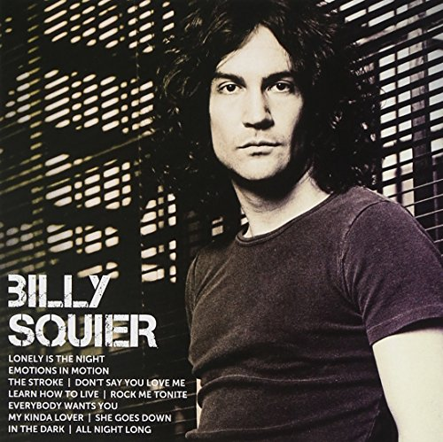 BILLY SQUIER - LEARN HOW TO LIVE LYRICS