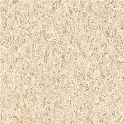 Armstrong World Industries 51858 Excelon Floor Tile 45 Per Case