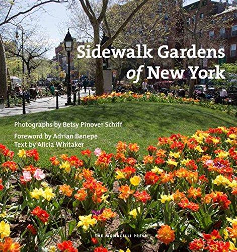 Sidewalk Gardens of New York (Best Begonias For Hanging Baskets)