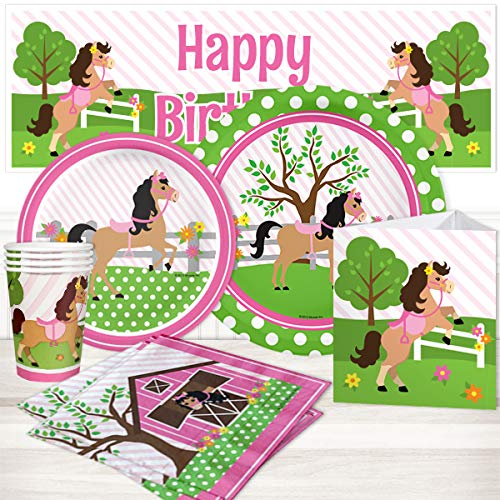 Birthday Direct Playful Pony Party Supplies Package for 16 -