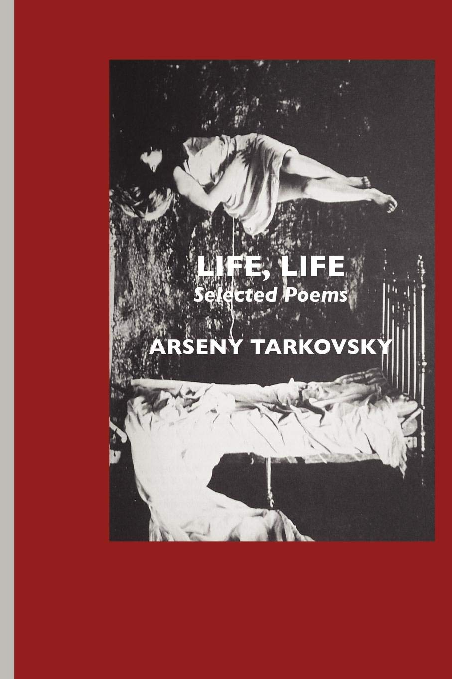Life Life: Selected Poems (European Writers)