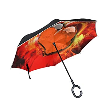 Amazon.com: Paraguas reversible reversible de papel pintado ...