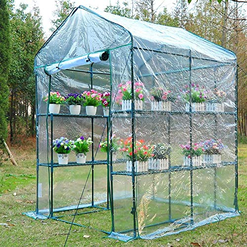 Tidyard 5 ft x 5 ft x 6 ft Portable Walk in Garden Greenhouse with Plant Shelves and Door Outdoor Patio Canopy Gazebo Flower Herb Gardening Heavy Duty PVC Cover Steel Frame Walk-in Green House (Steel Frame Patio Cover)
