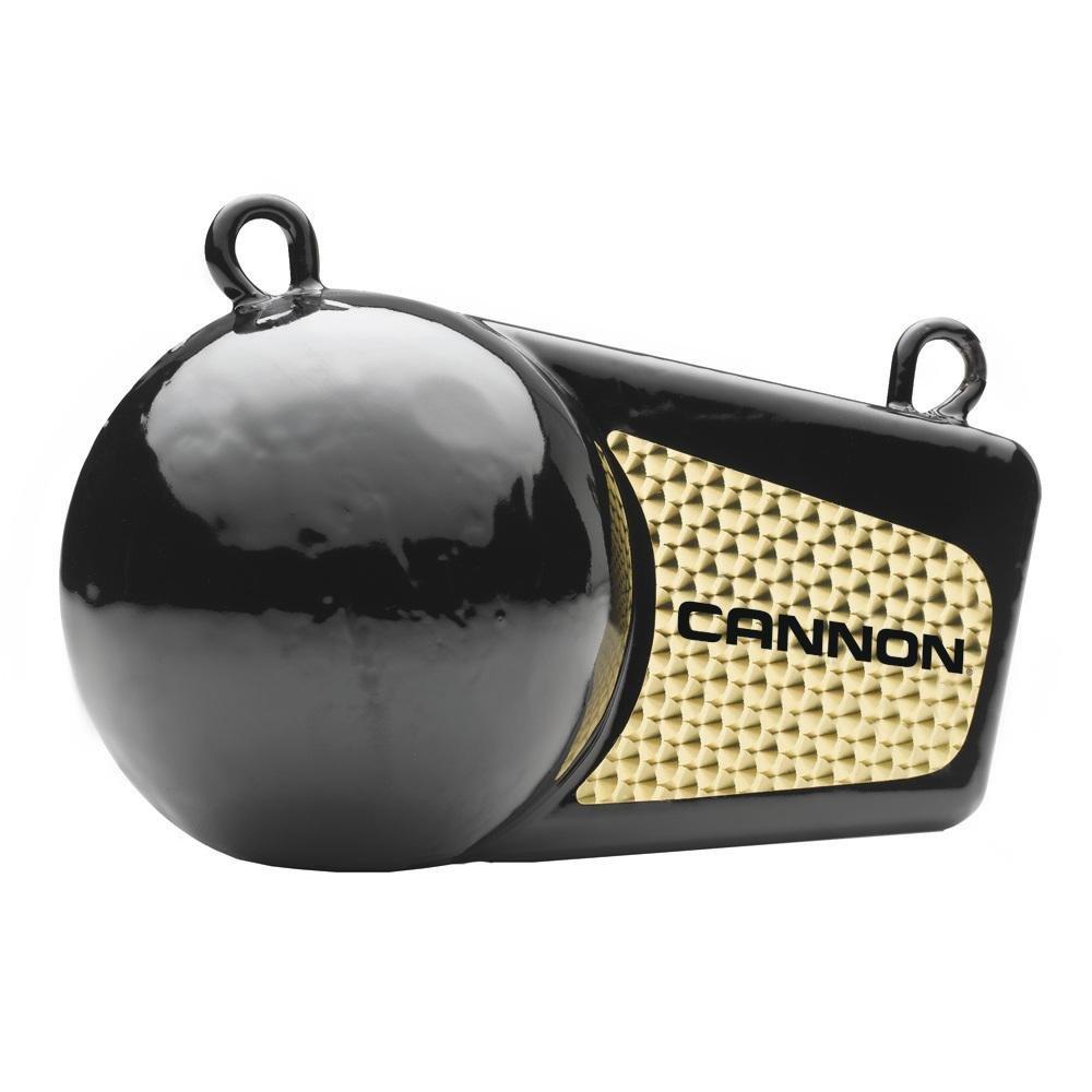 特価商品  Cannon Downriggersフラッシュ重量6 Cannon lb lb 2295180 2295180 B005E46EH0, あんどんや:c26af617 --- a0267596.xsph.ru