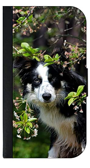 Border Collie-Jacks Outlet Case with Closing Flip Cover and Credit Card Slots for the