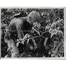 1966 Press Photo Vietnam War, Claymore Mines - orb62714