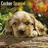 Cocker Spaniel Puppies Calendar - Just Cocker Spaniel Puppies Calendar - 2015 Wall calendars - Dog Calendars - Monthly Wall Calendar by Avonside