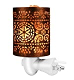 Vorally Himalayan Salt Lamp with Wall Plug
