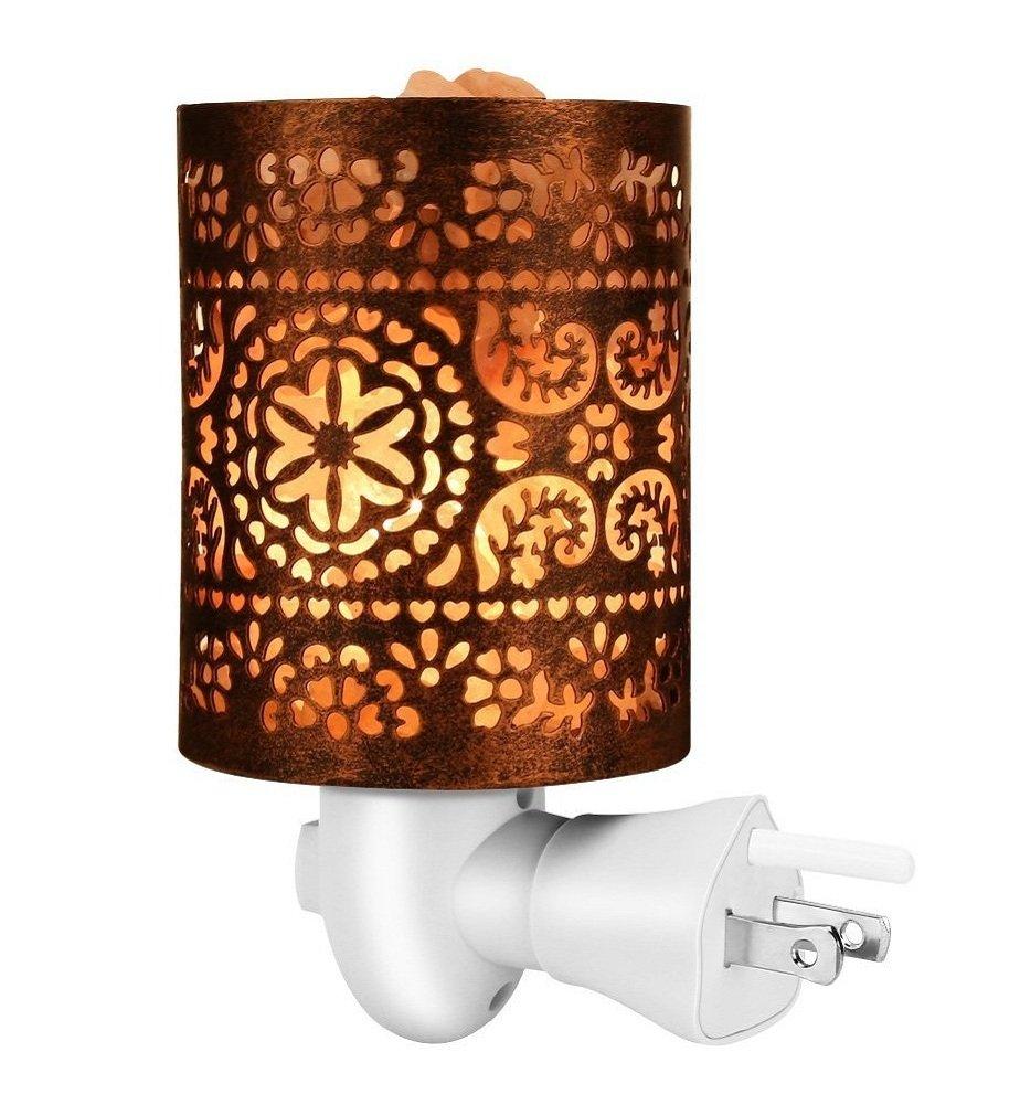 Vorally Himalayan Salt Lamp with Wall Plug - Natural Metal Salt Lamp Purify Air - Hollow Shade Salt Wall Light with 2 Bulbs