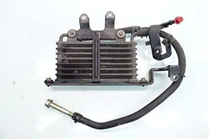 Amazoncom Acura RL ATF Transmission Oil Cooler - Acura rl transmission fluid