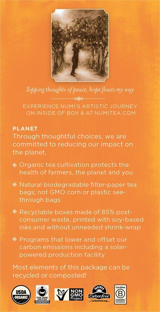 Numi Organic Tea White Orange Spice, Full Leaf White Tea, 16-Count Tea Bags, 1.58 Oz  (Pack of 2) by Numi Organic Tea (Image #3)