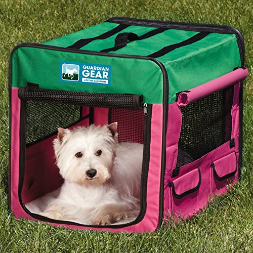 Large Mesh Windows on Four Sides for Maximum Ventilation Dog Crate in Pink/Green, Small