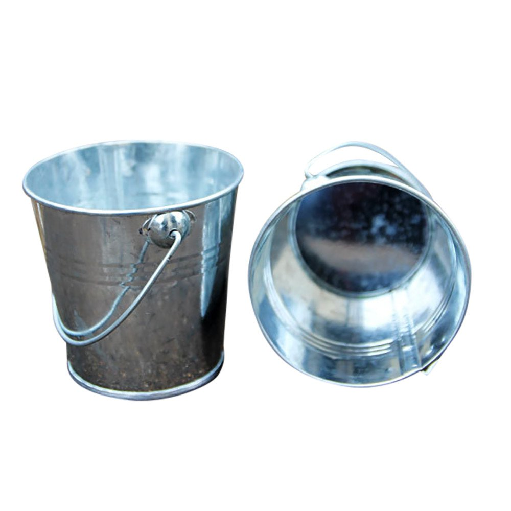 Freeby Mini Metal Bucket, Candy Pails, Ice Bucket,Flower Plant Pot with Handles for Party Favors Gifts Wedding Gardening