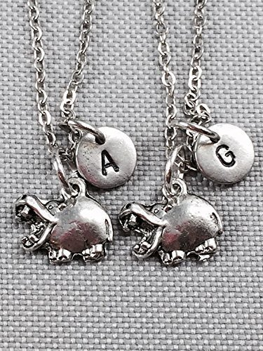 monogram sister Best friend necklace initial bff necklace personalized friendship jewelry hedgehog necklace animal necklace