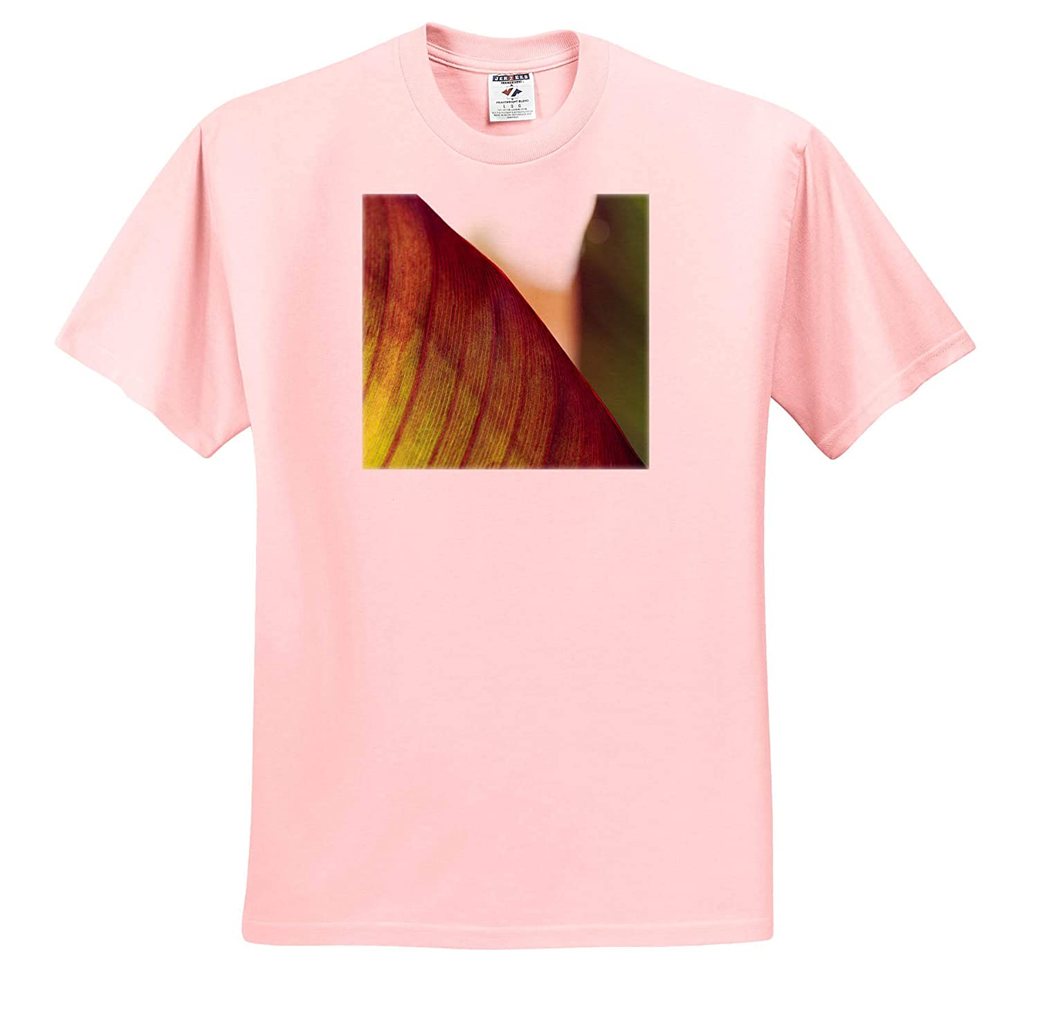 Macro Photograph of a Tropical Canna Lily Leaf Plants ts/_320128 3dRose Stamp City - Adult T-Shirt XL