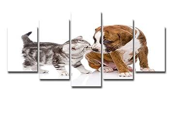 HDWALLART Impresiones De Lienzos Grandes HD Impreso 5 Piezas Arte En Lienzo Perro Lindo Beso Gato