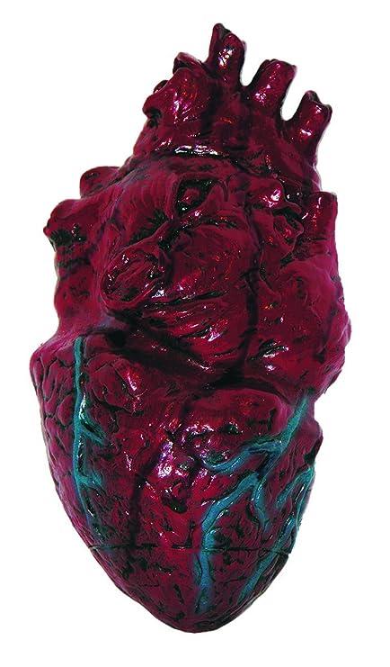 Amazon.com: Simulated Body Parts ~ Heart 1/Pkg, Pkg/1: Toys & Games