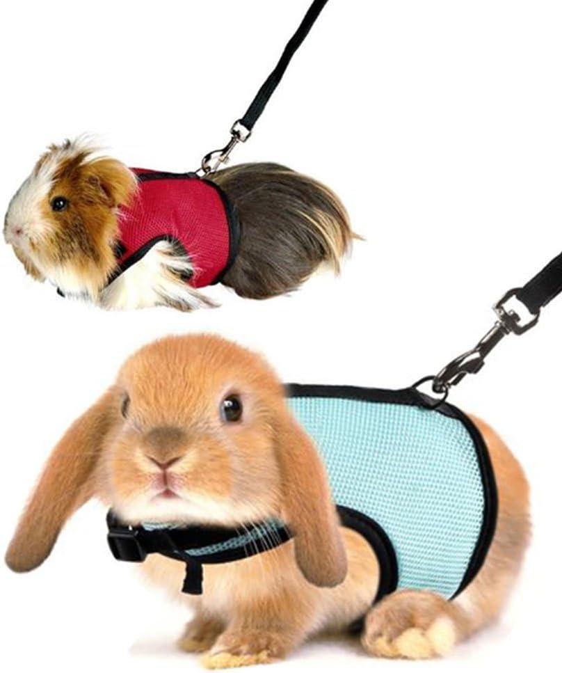 UxradG - Arnés de malla y correa para conejos y hámsteres, con cuerda de guía (cierre de hebilla) para caminar y correr, para hurones, cobayas y mascotas pequeñas