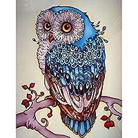 iDream Home Decoration 5D Diamond Painting Rhinestone Owl DIY Mosaic Wall Decor (24cm x 16cm)
