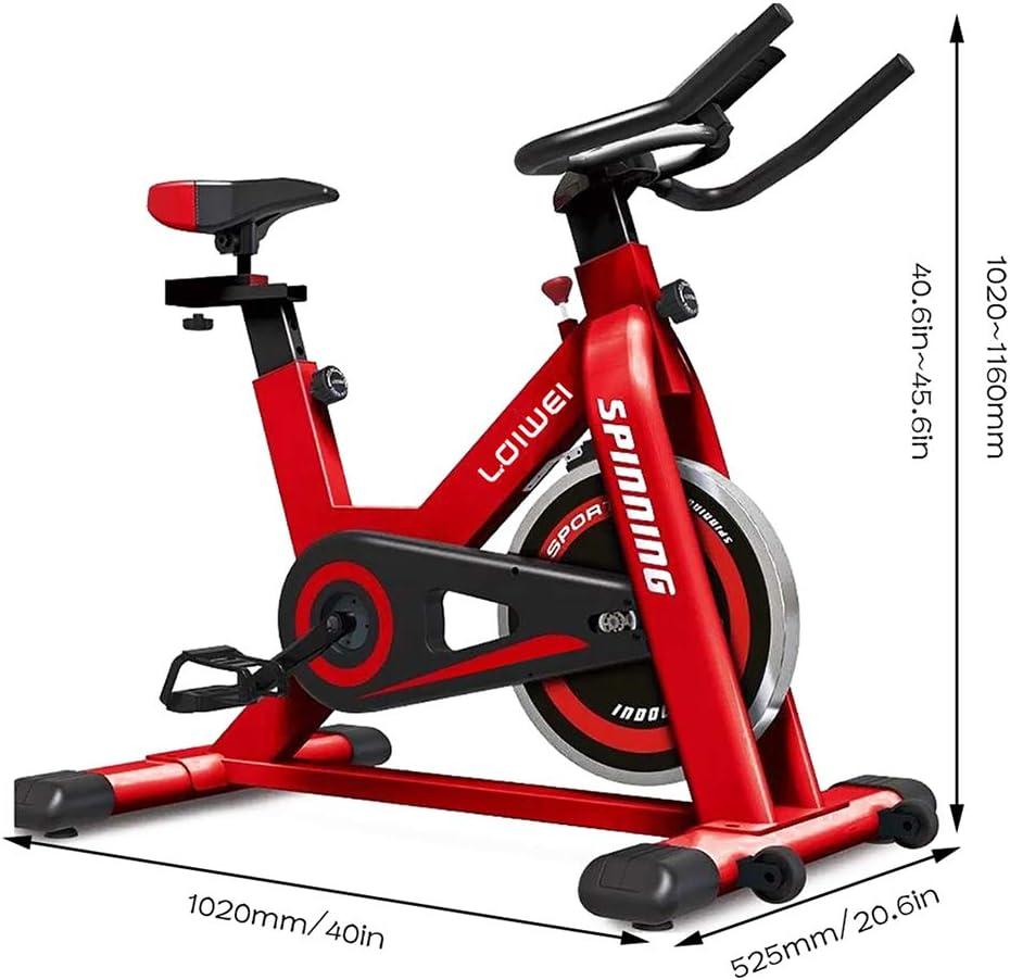 YL Bicicleta de Spinning, transmisión por Correa Cubierta ...