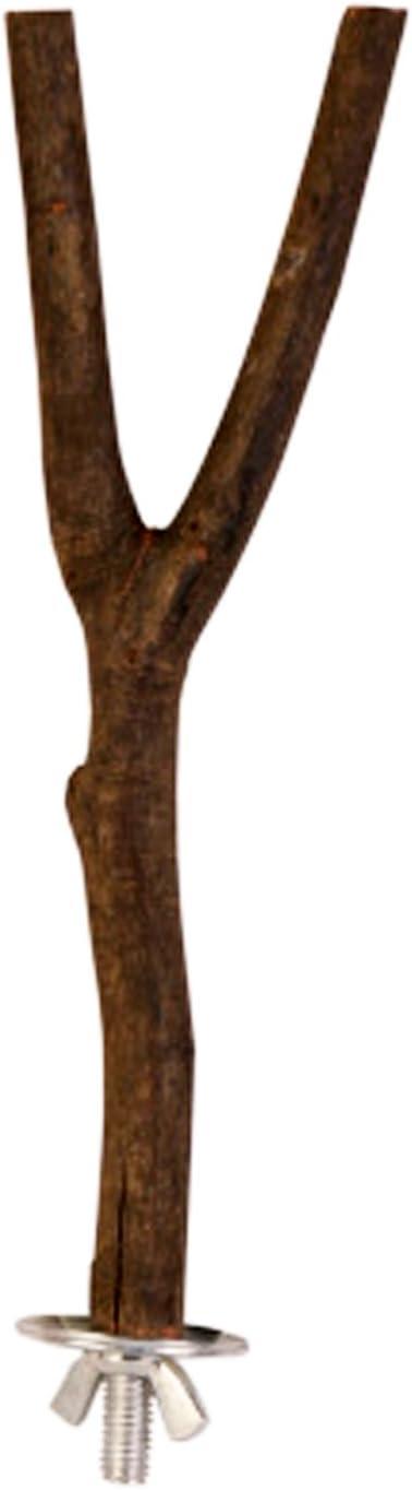 Percha de Madera Natural para Perca Canaria para Mascotas, para Perca de bujía, cacatúa, Loro, 20 cm